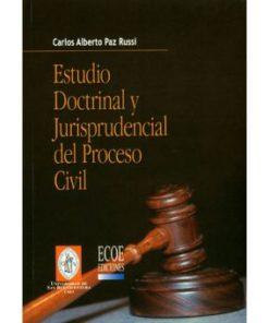 estado doctrinal y jurisprudencial del proceso civil