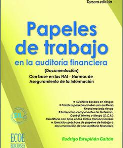 Papeles de trabajo en la auditoría financiera - 3ra Edición